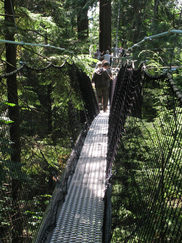Greenheart Canopy Walkway at UBC Botanical Garden & Greenheart Canopy Walkway at UBC Botanical Garden | Botany Photo ...